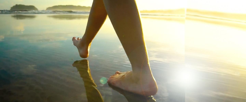 <p>Find Mindfulness</p>